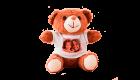 Ursinho – Personalizado