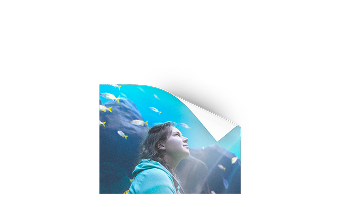 Poster_20x30cm