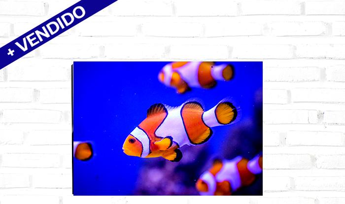 QuadroAluminio_30x45cm